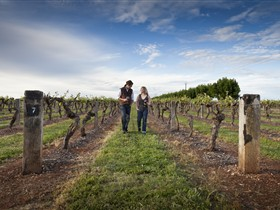 Coonawarra Wineries Walking Trail - Accommodation Brisbane