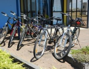 George Town to Low Head Walking and Cycling Trail - Accommodation Brisbane