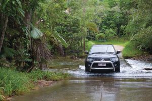 The Pioneer Valley and Eungella National Park - Accommodation Brisbane
