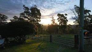 Glengarry farm stay BnB - Accommodation Brisbane